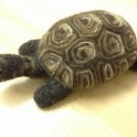 Needle felted tortoise